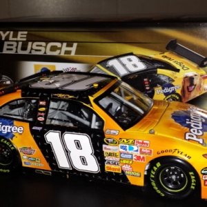 Kyle Busch 2008 Pedigree