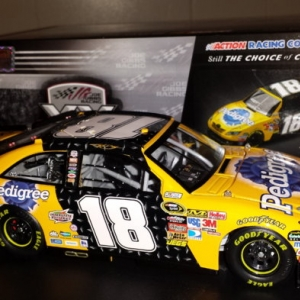 Kyle Busch 2011 Pedigree