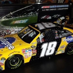 Kyle Busch 2010  Pedigree